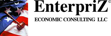 EnterpriZ Economic Consulting LLC